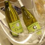 春のワイン講座 開催報告